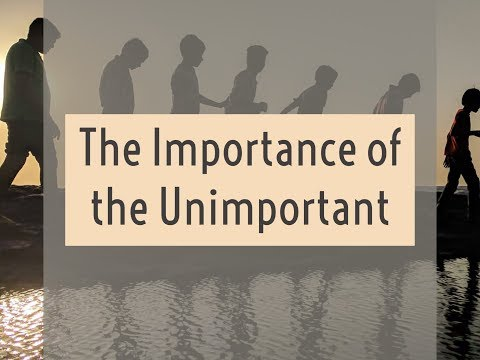 The Importance of the Unimportant (Little Ones according to Jesus)